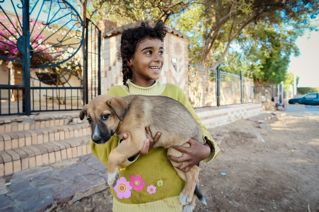 A Bedouin girl holds a stray puppy that lives on the street in front of her house.